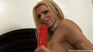 Lara Gaucha fucks herself with sextoys