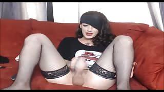 Sega trans in diretta webcam xxx