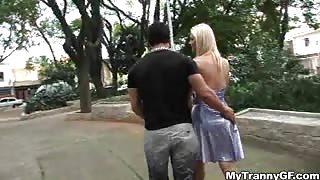 Trans puttana abbordata al parco pubblico...