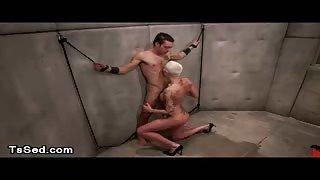 Uomo legato e inculato dalla sexy Mistress Dani Daniels